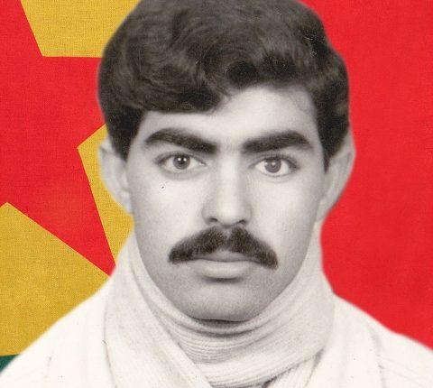 الشهيد محمد علو
