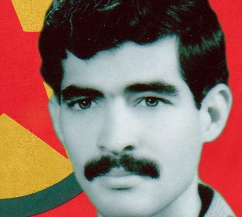 الشهيد محمود عثمان