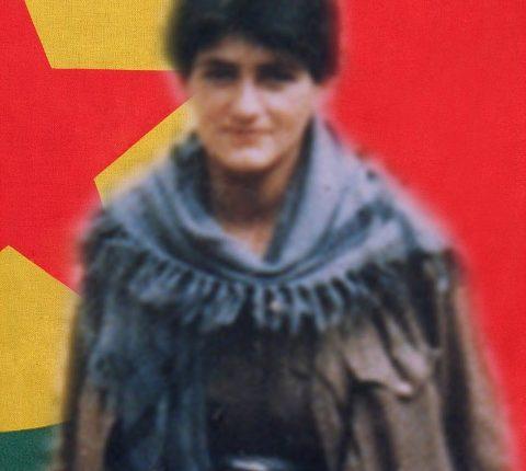 الشهيدة أميرة حسن