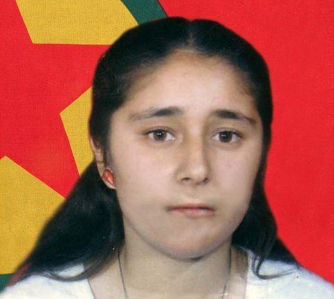 الشهيد كردستان فاقي