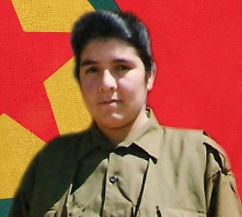 الشهيد كردستان محمد