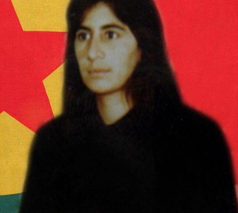 الشهيدة حليمة حسين